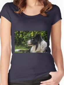 portrait of a border collie dog and still see what's around him Women's Fitted Scoop T-Shirt