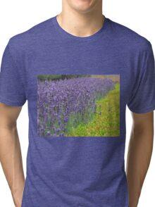 Lavender Field Tri-blend T-Shirt