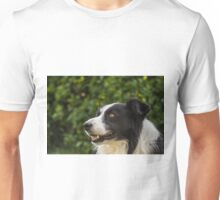 portrait of a border collie dog and still see what's around him Unisex T-Shirt