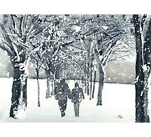 Meadows Snow Photographic Print