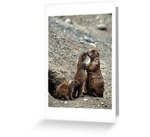 P DOG FAMILY Greeting Card