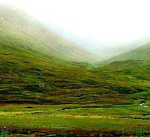 Misty Scottish Glen by hans p olsen