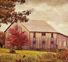 A quiet fall day in the suburbs of the country by vigor