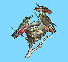 Hummingbirds on Nest  by Greenbaby