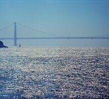 bay and bridge by califpoppy65