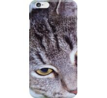 tigger-my tabby cat iPhone Case/Skin