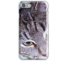 tigger-my tabby cat iPhone Case/Skin