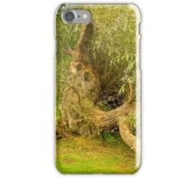Old Willow iPhone Case/Skin
