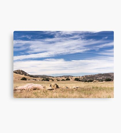 Dry meadows near Julian, CA Canvas Print