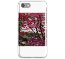 japanese maples,tea garden iPhone Case/Skin
