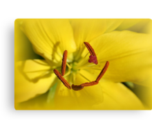 Happy Lily Canvas Print