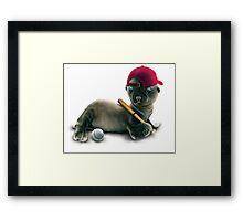 BABY SEAL Framed Print