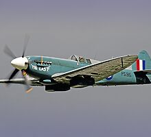 The Last - Spitfire PS915 (Mk PRXIX) by Colin  Williams Photography