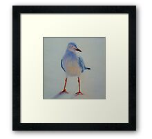 Sunset Seagull. Elizabeth Moore Golding 2011 Framed Print