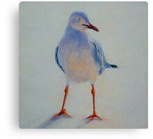 Sunset Seagull. Elizabeth Moore Golding 2011 Canvas Print