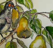 Partridge in a pear tree. Elizabeth Moore Golding 2011 by Elizabeth Moore Golding