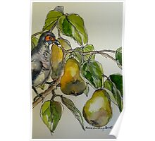 Partridge in a pear tree. Elizabeth Moore Golding 2011 Poster