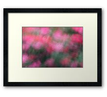 Pink Blossoms in Motion Framed Print