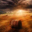 Harvest Rain by Cliff Vestergaard