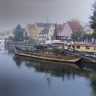 Regensburg ( 4 ) - An Early Morning Arrival by Larry Lingard-Davis