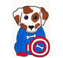 Puppy Dog America - Animal Superhero Photographic Print