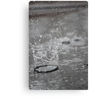 Water Crown Canvas Print