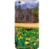 SPRING, CADES COVE iPhone Case/Skin