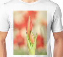 Hippeastrum Flower - Beautiful Red Romance Unisex T-Shirt