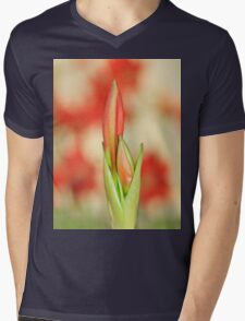 Hippeastrum Flower - Beautiful Red Romance Mens V-Neck T-Shirt