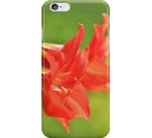 Red Flower Romance - Vibrant Beauty iPhone Case/Skin