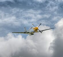 P51 Mustang - Cadillac of the Sky by © Steve H Clark Photography
