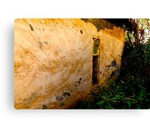 The Old Wall Canvas Print