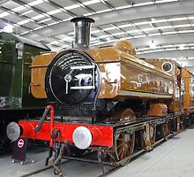 The Railway Children Remembered by Francis Drake