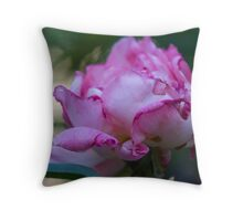 dried rose in the garden Throw Pillow