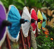 Umbrella Garden by Ian Mitchell