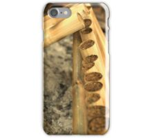 Sticky Rice Cooking iPhone Case/Skin