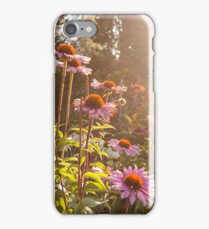 Coneflower garden iPhone Case/Skin