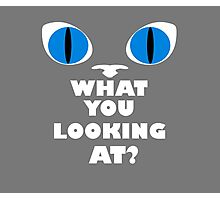 Blue Cat Eyes - What You Looking At? - White Text Version Photographic Print