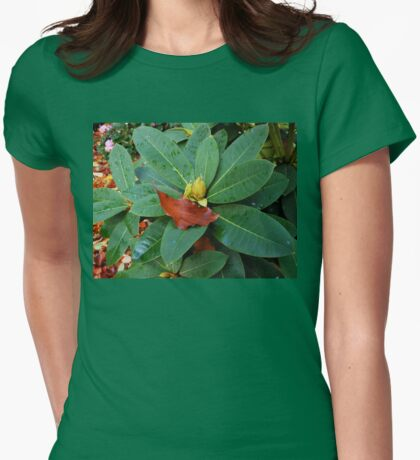 Spring and Autumn Womens Fitted T-Shirt