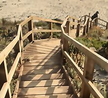 Steps at Lights Beach by Elaine Teague