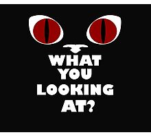 Red Cat Eyes - What You Looking At? - White Text Version Photographic Print