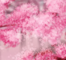 Blooming Sakura Trees Sticker