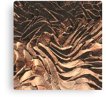 Macro Copper Abstract Canvas Print