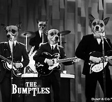 The Bumptles! by Bumpster
