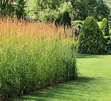 finely manicured lawn by mrivserg