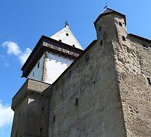 medieval castle against the sky by mrivserg