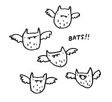 Bats!! by Sophie Corrigan