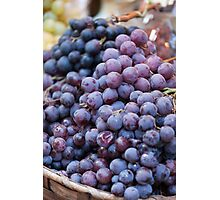 black grape Photographic Print
