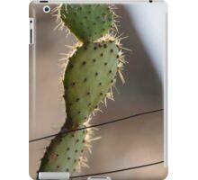 succulent plant in the vase iPad Case/Skin