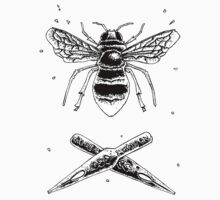 Bee and ink nibs by Matthew Britton
